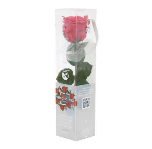 PRZ2490-05-rosa-tallo-mini roja