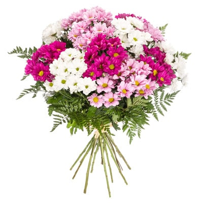 ramo-de-flores-variado-10_20