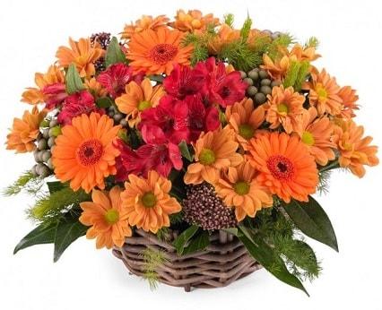 Cesta de flores variadas 1