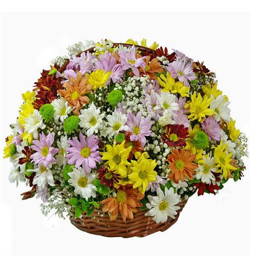 Cesta de flores variadas 5