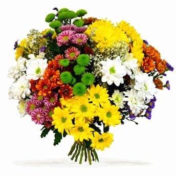 Ramo de flores variadas 23